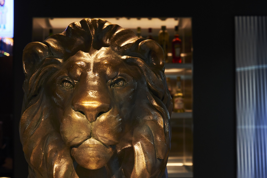 lion_20200820_17